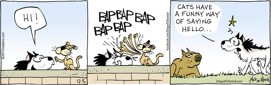 Dogs of C-Kennel for Dec 05, 2017