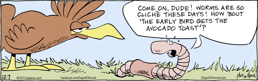 Dogs of C-Kennel for Dec 07, 2017