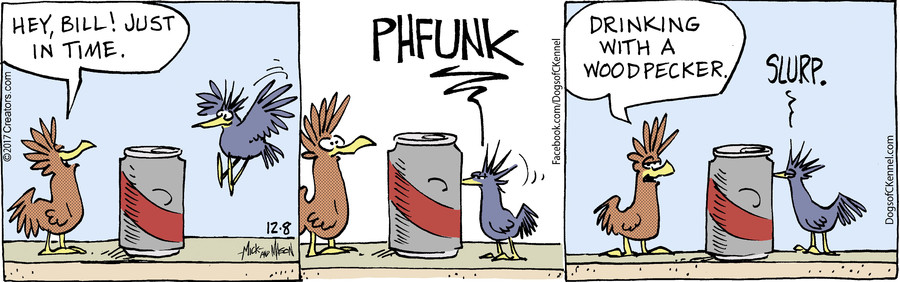 Dogs of C-Kennel for Dec 08, 2017
