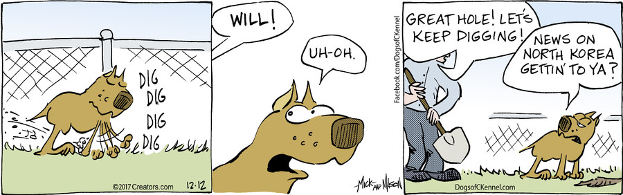 Dogs of C-Kennel for Dec 12, 2017