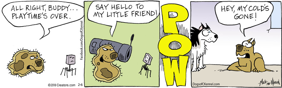 Dogs of C-Kennel for Feb 06, 2018