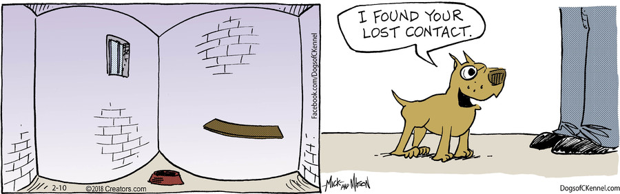 Dogs of C-Kennel for Feb 10, 2018