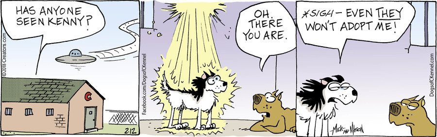 Dogs of C-Kennel for Feb 12, 2018