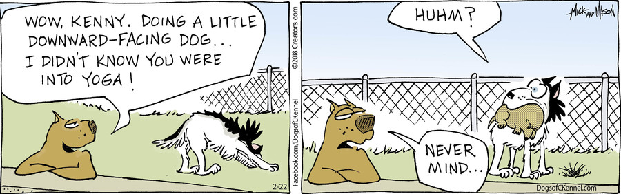 Dogs of C-Kennel for Feb 22, 2018