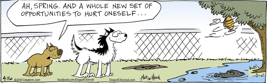Dogs of C-Kennel for Apr 16, 2018