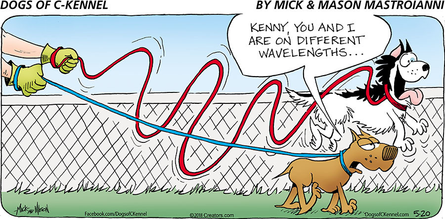 Dogs of C-Kennel for May 20, 2018