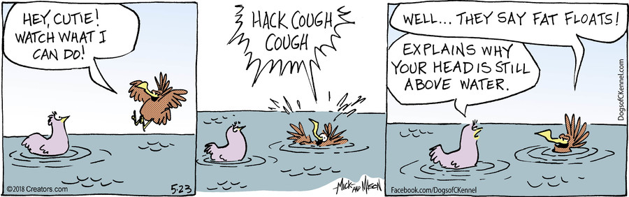 Dogs of C-Kennel for May 23, 2018