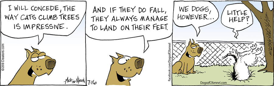 Dogs of C-Kennel for Jul 16, 2018