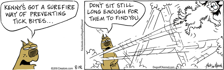 Dogs of C-Kennel for Aug 18, 2018