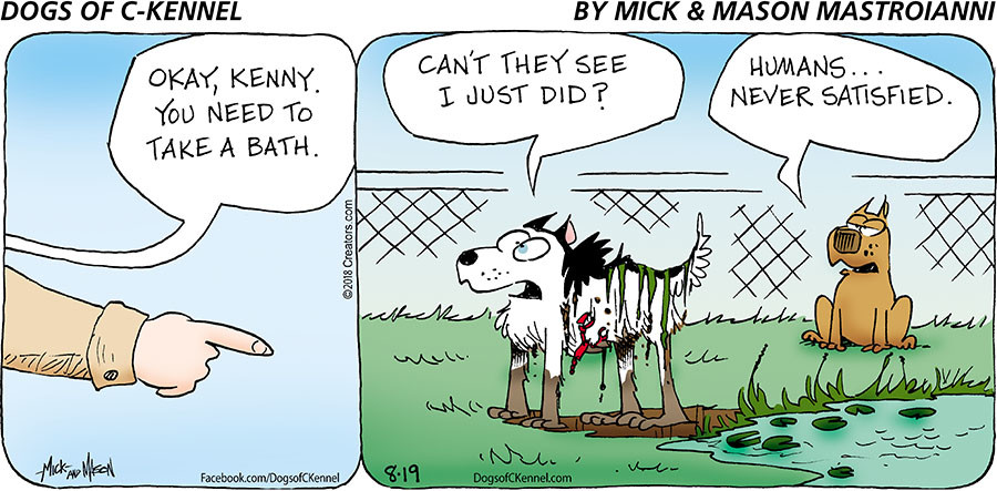 Dogs of C-Kennel for Aug 19, 2018