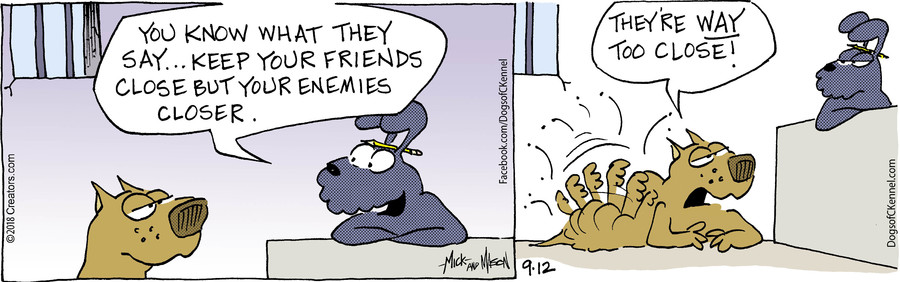 Dogs of C-Kennel for Sep 12, 2018