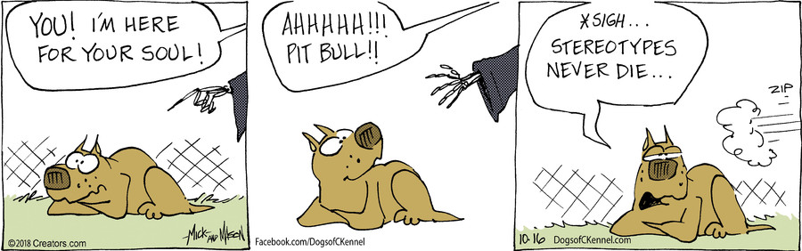 Dogs of C-Kennel for Oct 16, 2018