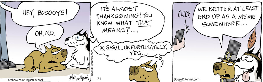 Dogs of C-Kennel for Nov 21, 2018