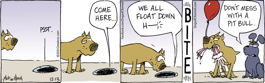 Dogs of C-Kennel for Dec 13, 2018