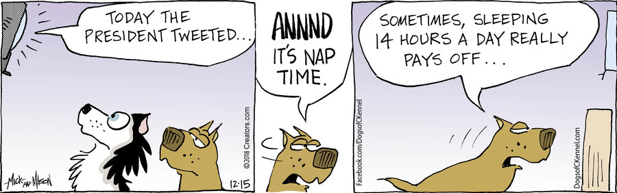 Dogs of C-Kennel for Dec 15, 2018