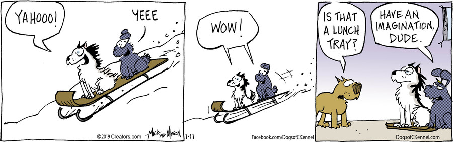 Dogs of C-Kennel for Jan 11, 2019