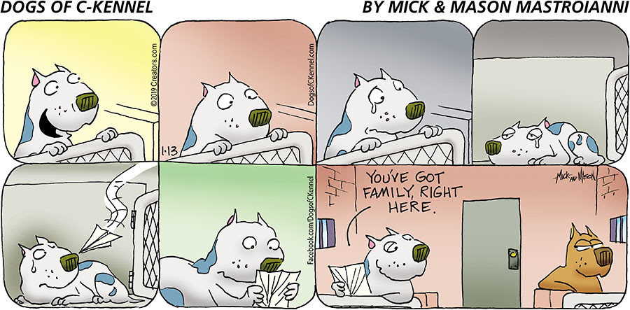 Dogs of C-Kennel for Jan 13, 2019