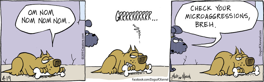 Dogs of C-Kennel for Apr 19, 2019