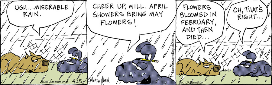 Dogs of C-Kennel for Apr 25, 2019