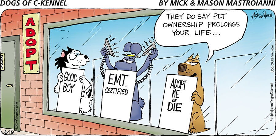 Dogs of C-Kennel for Jun 16, 2019