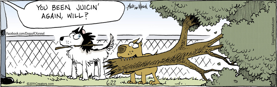 Dogs of C-Kennel for Jun 22, 2019