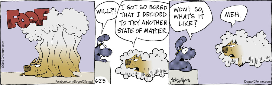 Dogs of C-Kennel for Jun 25, 2019
