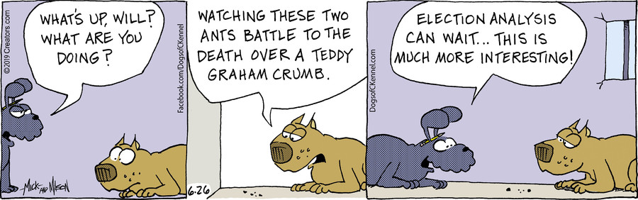 Dogs of C-Kennel for Jun 26, 2019