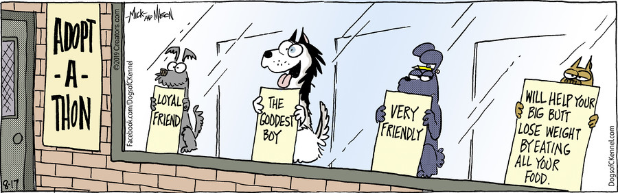 Dogs of C-Kennel for Aug 17, 2019