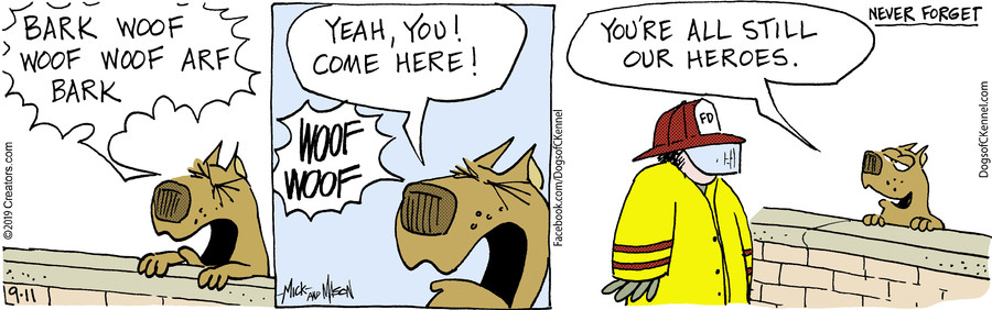 Dogs of C-Kennel for Sep 11, 2019