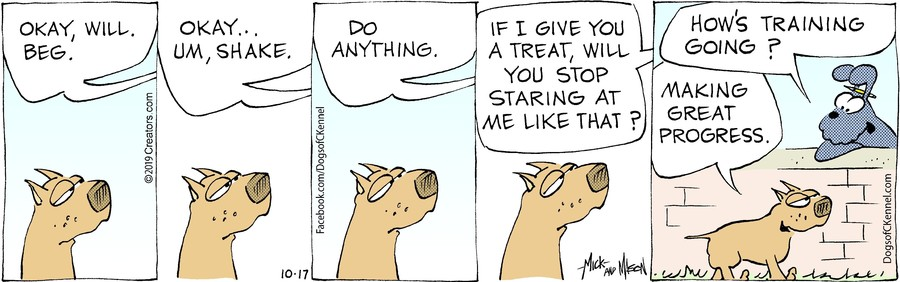 Dogs of C-Kennel for Oct 17, 2019