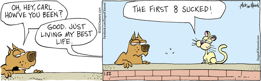 Dogs of C-Kennel for Jan 22, 2020