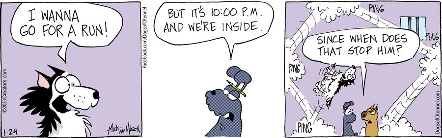 Dogs of C-Kennel for Jan 24, 2020
