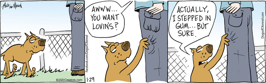 Dogs of C-Kennel for Jan 29, 2020