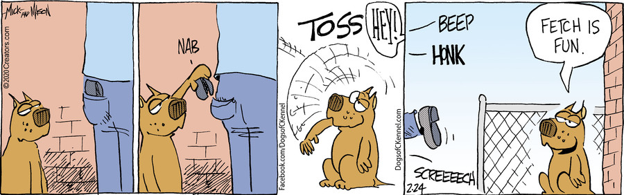 Dogs of C-Kennel for Feb 24, 2020