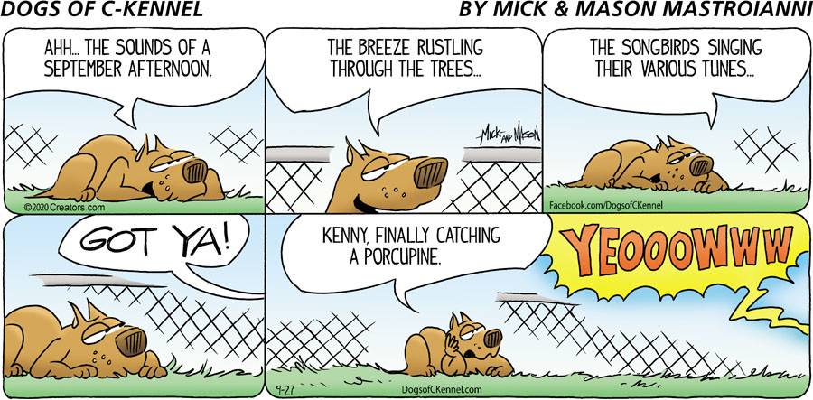 Dogs of C-Kennel for Sep 27, 2020