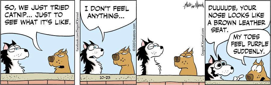 Dogs of C-Kennel for Oct 23, 2020