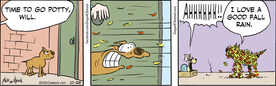 Dogs of C-Kennel for Oct 28, 2020