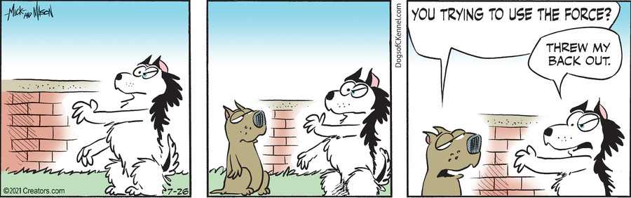 Dogs of C-Kennel for Jul 26, 2021