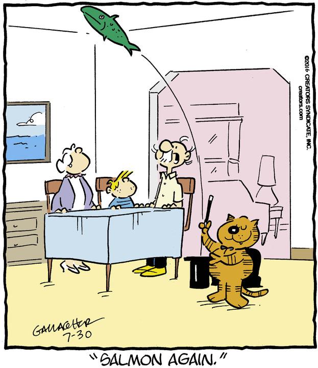 Heathcliff for Jul 30, 2016