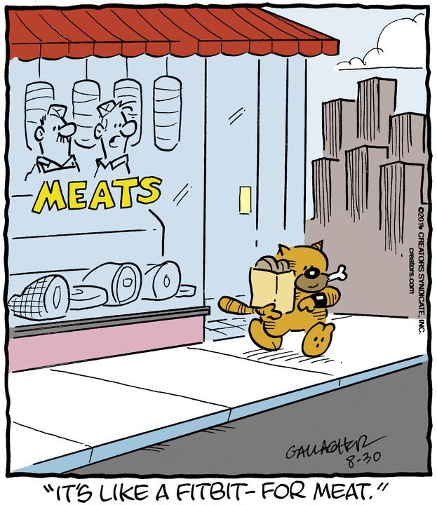 Heathcliff for Aug 30, 2016