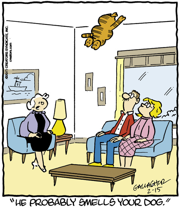 Heathcliff for Feb 15, 2017