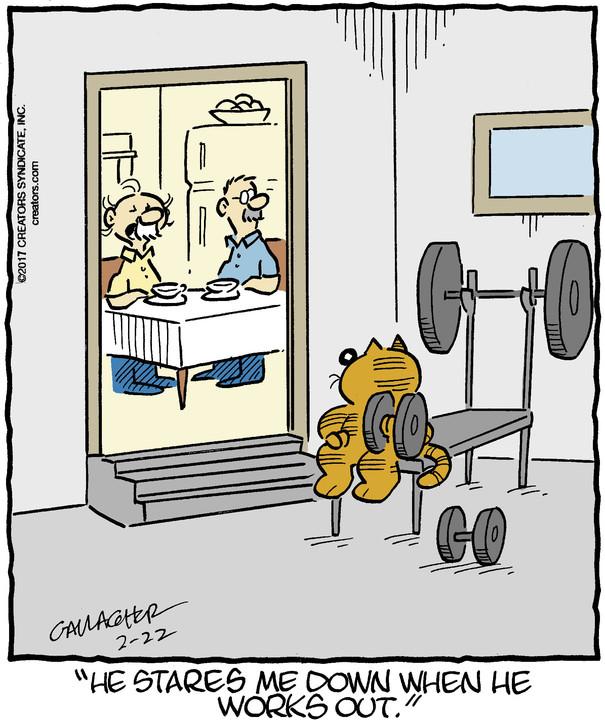 Heathcliff for Feb 22, 2017