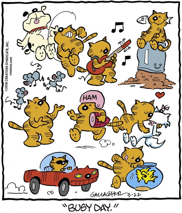 Heathcliff for Mar 22, 2018