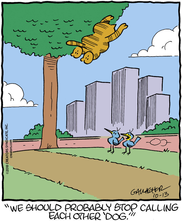 Heathcliff for Oct 13, 2018