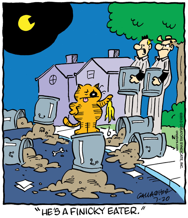 Heathcliff for Jul 20, 2019