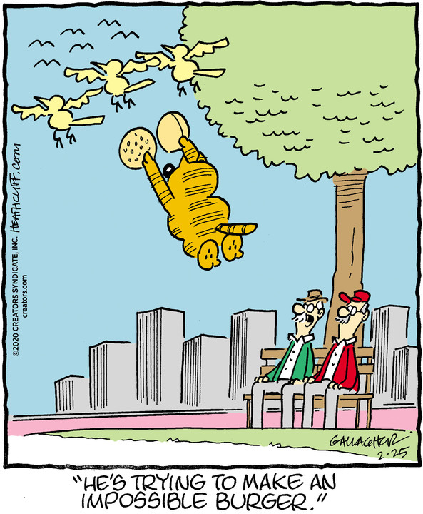 Heathcliff for Feb 25, 2020