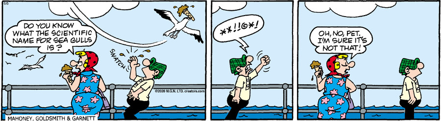 Andy Capp for Aug 05, 2020