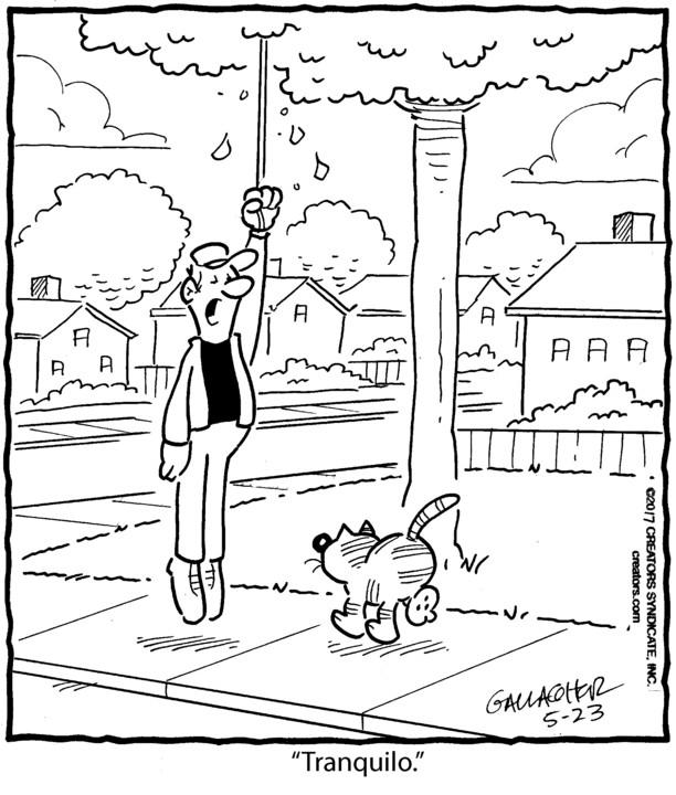 Heathcliff Spanish for May 23, 2017